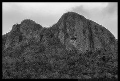_MG_9299c (Steven Encarnación) Tags: steven encarnacion photographer canon 6d puertorico voigtlander 58mm f14 nokton blackandwhite mountain outdoors