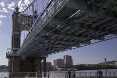 Bridge collection (sunstore08) Tags: cincinnatioh worldwidephotowalk