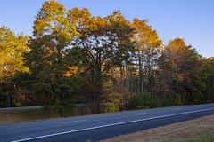 Foliage 19 Oct 2019 (21) (smata2) Tags: autumnfoliage pioneervalley