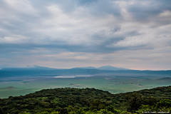 2019.06.08.3606 Watery Ngorongoro (Brunswick Forge) Tags: interior karatu 2019 grouped tanzania africa serengeti serengetinationalpark bird birds outdoor outdoors animal animals animalportraits wildlife nature nikond750 nikkor200500mm summer winter maasai peopleportraits ngorongoro ngorongoroconservationarea ngorongorocrater tarangirenationalpark nikond500 inmotion fx tamron1530mm water river lake manyara lakemanyara lakemanyaranationalpark day night sunny cloudy clear sky air rain storm stormyweather favorited