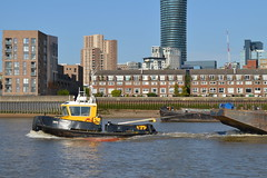 Essex Goes to London (dhcomet) Tags: london stan tug 1205 damen river thames swsessex barge boat swalshsons