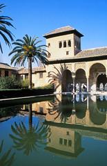 Portico de Partal, Palacios Nazaries, Alhambra, Granada (Niall Corbet) Tags: spain andalucia granada alhambra palmtree reflection arch palace