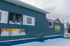 Churchill Canada27 (J.Dijkstra) Tags: canada churchill ijsberen