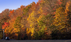 Foliage 19 Oct 2019 (31) (smata2) Tags: autumnfoliage pioneervalley
