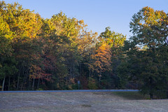 Foliage 19 Oct 2019 (7) (smata2) Tags: autumnfoliage pioneervalley