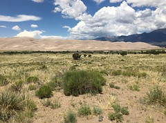 Great Sand Dunes National Park and Preserve (Alamosa County, Colorado) (courthouselover) Tags: colorado co landscapes alamosacounty greatsanddunesnationalpark greatsanddunesnationalparkandpreserve nationalparks nationalparksystem sanluisvalley northamerica unitedstates us