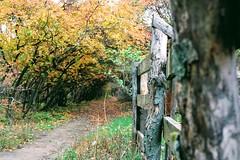 #autumn in #odessa (molokoimed) Tags: autumn odessa