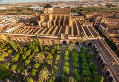 View Of Mezquita