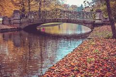 Rusty autumn (Aránzazu Vel) Tags: rustyautumn autumn otoño autumncolors ponte bridge puente nymphenburgpalacepark münchen munich bayern bavaria park parque nature naturaleza