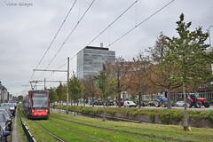 5027 - 9 - 16.10.2019 (VictorSZi) Tags: olanda netherlands transport tram tramvai autumn toamna nikon nikond5300 october octombrie