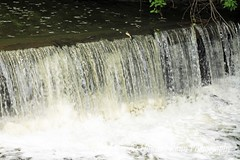 Lantermans Mill (29) (Framemaker 2014) Tags: lantermans mill youngstown ohio creek park historic eastern united states america
