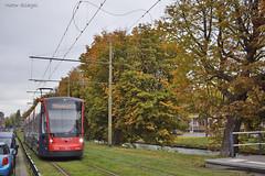 5016 - 9 - 16.10.2019 (VictorSZi) Tags: olanda netherlands transport tram tramvai autumn toamna nikon nikond5300 october octombrie