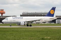 D-AILM (PlanePixNase) Tags: aircraft airport planespotting haj eddv hannover langenhagen lufthansa airbus 319 a319