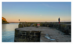 JUXTAPOSITION (Barry Haines) Tags: sigma art 35mm f12 dn dg cornwall charlestown bird fisherman sony a7r4