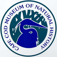 Cape Cod Museum of Natural History (Timothy Valentine) Tags: squaredcircle sign 1119 2019 large brewster massachusetts unitedstatesofamerica