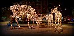 They are back. (Papa Razzi1) Tags: lights christmas reindeer winter 2019 s9 stockholm sweden