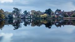 Beaulieu, New Forest (StevieT46) Tags: newforest beaulieu