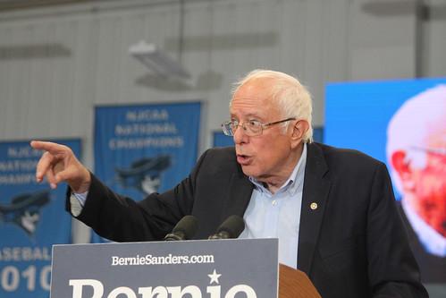 Bernie, From FlickrPhotos