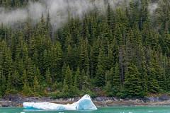 Juneau, Alaska (jeff's pixels) Tags: fog waterfall landscape alaska juneau nature iceberg