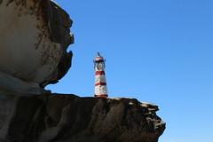IMG_0074 (gervo1865_2 - LJ Gervasoni) Tags: sculpture by sea bondi tamarama 2019 photographerljgervasoni art festival event coast coastal walk cliffs water sand sky sunny day spring