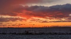 Sunset in St-Hubert, Quebec (pegase1972) Tags: québec quebec qc montréal montreal canada sunset winter hiver neige licensed dreamstime exclusive explore explored