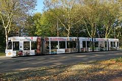 Flevoweg - Amsterdam (Netherlands) (Meteorry) Tags: europe nederland netherlands holland paysbas noordholland amsterdam oost east est flevoweg insulindeweg siemens combino 13g commerciallivery shell notrogen stikstof autumn auomne gvb03 tram streetcar tramway public transport publique transportencommun transit gvb gvb2094 youtube october 2019 meteorry