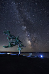 Kill Bear (Nicksemanphoto) Tags: kill bear provincial parks milky way stars