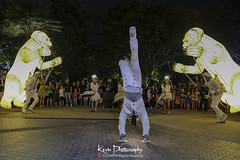 FXT28281 (kevinegng) Tags: voilah2019 gueuledours thebearsmouth singapore frenchsingaporefestival streetperformance performance danceperformance dance puppetbears puppets gardensbythebay frenchperformance nightphotography