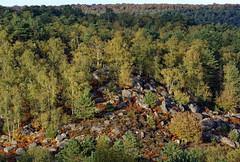 Apremont rocks (hbensliman.free.fr) Tags: fontainebleau forest landscape travel foliage france pentax pentaxart nature plants outdoor outside autumn season europe leaf