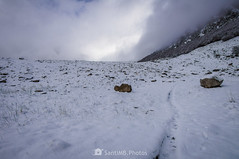 El rastro (SantiMB.Photos) Tags: 2blog 2tumblr 2ig conangles nieve snow otoño autumn bosque forest camino way path sendero geo:lat=4262435843 geo:lon=076789643 geotagged senet cataluna españa