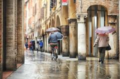 Ferrara, Italia 2019 Italy   Italie