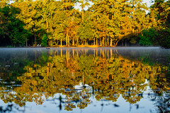 44:52 Morning Reflections (Woodlands Photog) Tags: shadowbend lake the woodlands texas reflections water pond morning