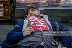 EM-191108-DxE-006 (Minister Erik McGregor) Tags: activism animalabuse animalbillofrights animalliberation animalrights animalsuffering animalsbattalion caaf canadiansagainstfur diein directaction directactioneverywhere dxe erikmcgregor nyc newyork peta peacefulprotest photography protest rememberrose righttorescue roselaw solidarity streetprotest theirturn usa wholefoods activists animalcruelty crowd cruelty demonstration news photojournalism protesters torture vegan veganism 9172258963 erikrivashotmailcom ©erikmcgregor