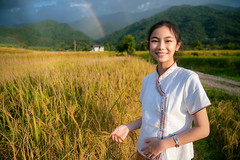 Thai girl walk on paddy and rice farm in lamduan woven cloth coffee shop (anekphoto) Tags: pua chiangrai chiangmai nan tourism tour job worker grain country vintage asia asian thai traditional tropical hand grow landscape thailand female work rice costume farmer outdoor food nature green harvest agriculture young paddy plant field girl farm rural growth countryside farming grass crop lifestyle people portrait organic holding summer woman women