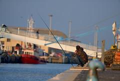 (Tony P Iwane) Tags: rome roma fishing candid tiber fiumicino italy italia streetphotography rivertiber tiberriver latium