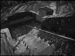 looking down, stairs, stone walls, metal railing, late light, Winsborough Lodge, Montreat Conference Center, Montreat, NC, Mamiya 645 Pro, mamiya sekor 45mm f-2.8, Bergger Pancro 400, Moersch Eco developer, 11.6.19 (steve aimone) Tags: lookingdown stairs stairway stonewalls metalrailing winsboroughlodge montreat northcarolina mamiya645pro mamiyasekkor45mmf28 mamiyaprime primelens 645 mediumformat monochrome monochromatic blackandwhite 120 120film film analog berggerpancro400 moerschecofilmdeveloper