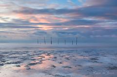 Nursling Colors! (karindebruin) Tags: boelies hellevoetsluis monique nederland thenetherlands visnetten zonsondergang zuidholland beach fishingpoles laagwater lowtide strand sunset water