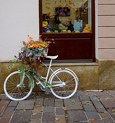 autumn still life (majka44) Tags: autumn stilllife colors košice street 2019 day light composition nice atmosphere facade window bicycle bike wall pumpkins city romance