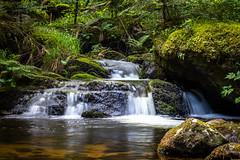 Namasté (S@ndrine Néel) Tags: sérénité nature valléedechorsin montbrison loire waterfall auvergnerhônealpes neelsandrine