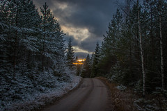First snow (mabuli90) Tags: finland forest nature winter landscape tree sun sky clouds sunset road snow