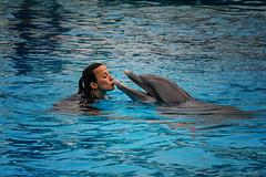 Delfinshow im Zoo Lissabon (Roman Achrainer) Tags: delfin delfinshow lissabon zoo achrainer wal wasser show portugal