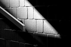 Shadows on Paris (Gilles B. Photographe) Tags: iledefrance noiretblanc monochrome paris cityscape outdoor bw blackandwhite nb france îledefrance
