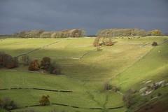 BeechenHill (Tony Tooth) Tags: nikon d7100 nikkor 55300mm landscape countryside hillside ridge limestone staffs staffordshire ilam