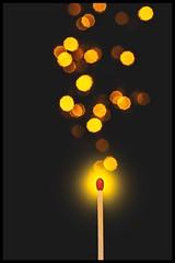 Let it glow (SonjaS.) Tags: letitglow glow leuchten hell bokeh steichholz trioplan sonjasayer canoneos6dmarkii tabletop