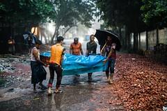 Some new neighbours (Ata M Adnan) Tags: neighbour movingin shiftinghomes home bangladesh chittagong furniture rain monsoon