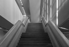 Structured (*Capture the Moment*) Tags: 2019 brandhorstmuseum fotowalk munich münchen october oktober sammlungbrandhorst sonya6300 sonye18200mmoss sonye356318200oss sonyilce6300 staircase stairs monochrom monochrome schwarzweiss