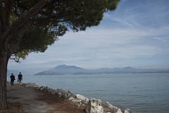Promenade *---- ° (Titole) Tags: lagodigarda lacdegarde sirmione titole nicolefaton people lake tree blue path friendlychallenges perpetualchallenge