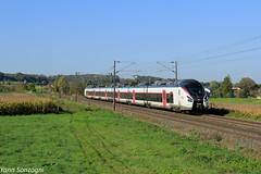 De la ville à la campagne (Lion de Belfort) Tags: train chemin de fer ligne 4 l4 alsace ballersdorf altkirch grand est ter sncf carmillon coradia liner astom b 85000 85009 l b85009l