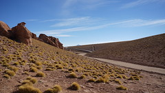 A long track in the heights of Southern Bolivia (Chemose) Tags: sony ilce7m2 alpha7ii mai may bolivie bolivia uyuni paysage landscape désert piste montagne mountain sudlipez southernlipez desert track valléedelasrockas lasrockasvalley lipez