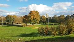 Autumncolours in Bourgondy (Freek Blokzijl) Tags: hiver autumn herfst natuur bos park kleuren indiansummer zonnig france bourgogne smartphone samsung galaxys7 lateafternoon november selongey